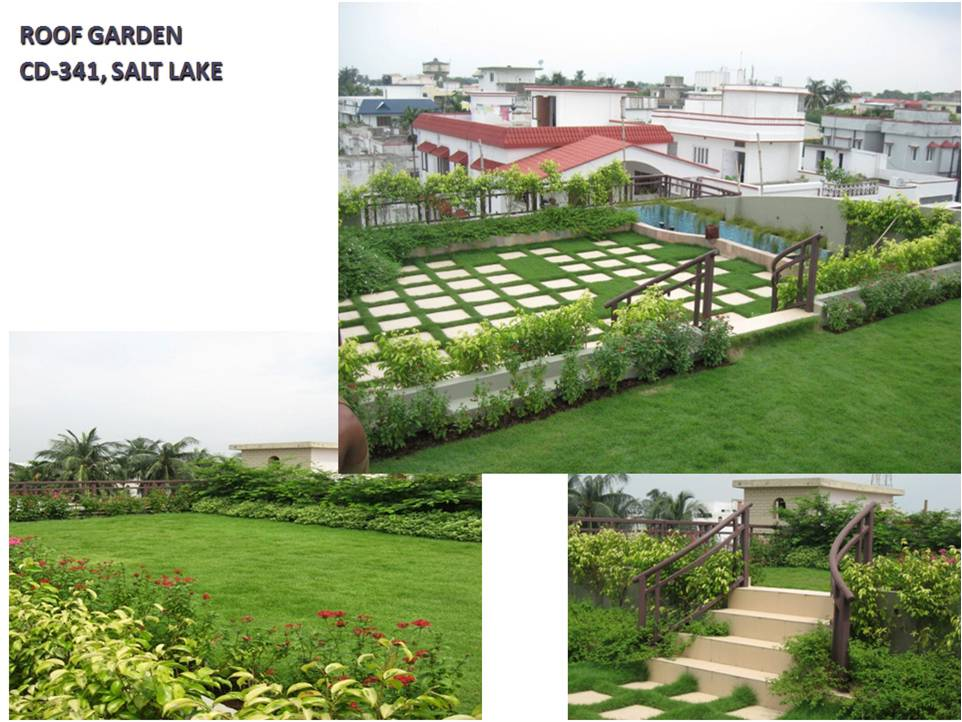 Roof Garden, CD-341, Salt Lake