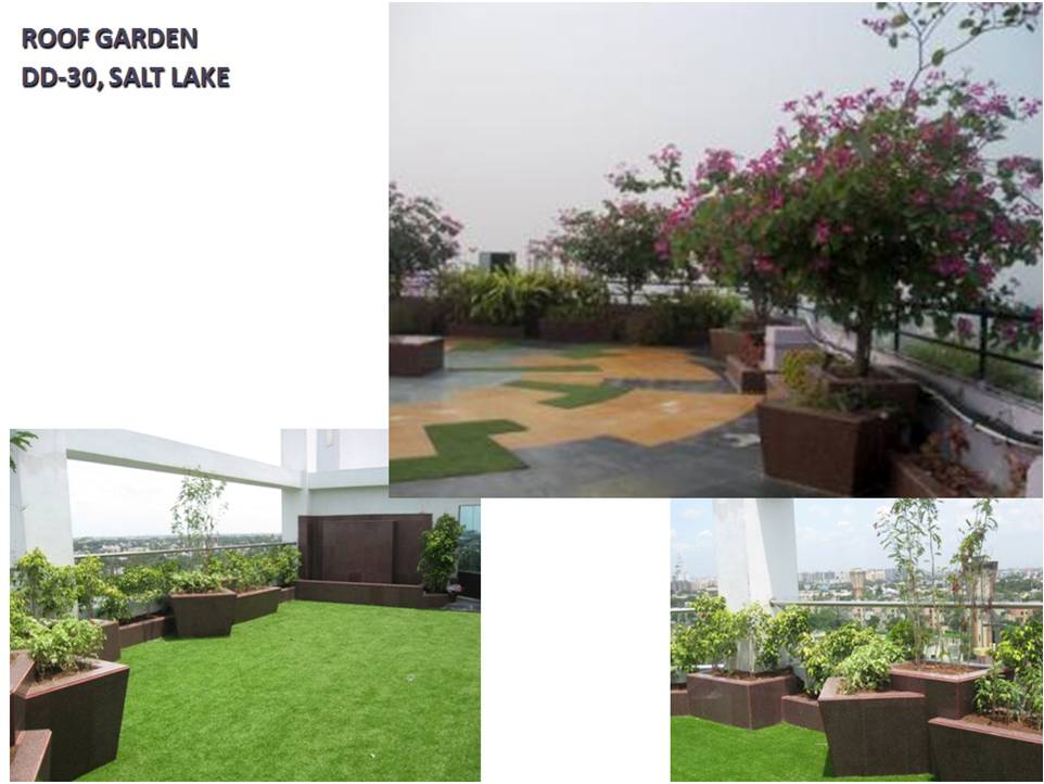Roof Garden, DD-30, Salt Lake